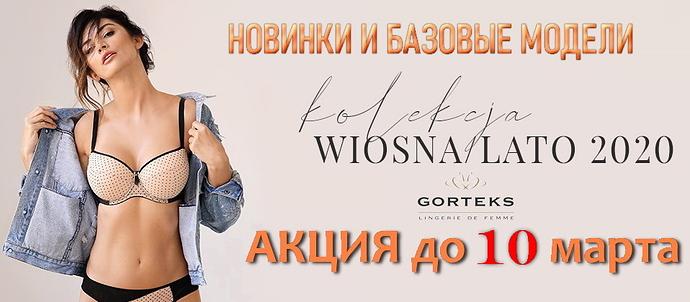 2020-02-27-gorteks2